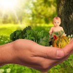 Alimentation bébé 4 mois: les débuts de la diversification