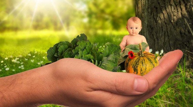 Alimentation bébé 4 mois : les débuts de la diversification