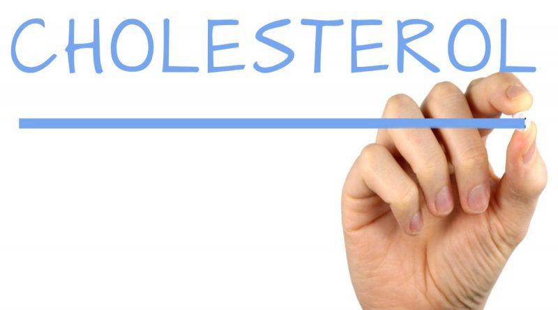 Le cholestérol : indispensable à l'organisme