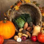 L'alimentation « bio » est-elle forcément la meilleure ?