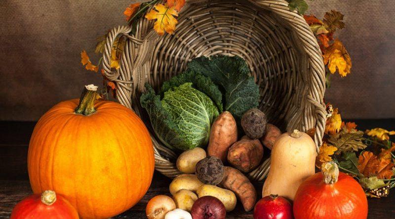 L'alimentation « bio » est-elle forcément la meilleure