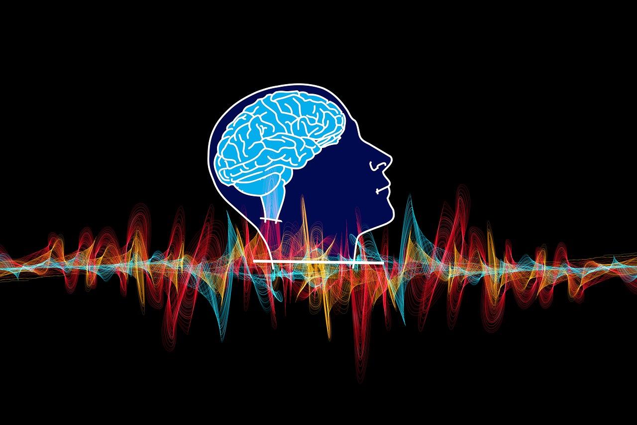 communication cerveau-corps