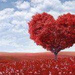 Être marié serait bénéfique pour la santé du coeur ?