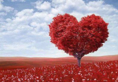 Être marié serait bénéfique pour la santé du coeur